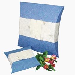 Pillow Top Bio-Degradable Urn